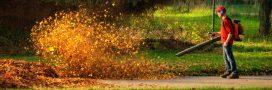 Les souffleurs à feuilles, un fléau à bannir?