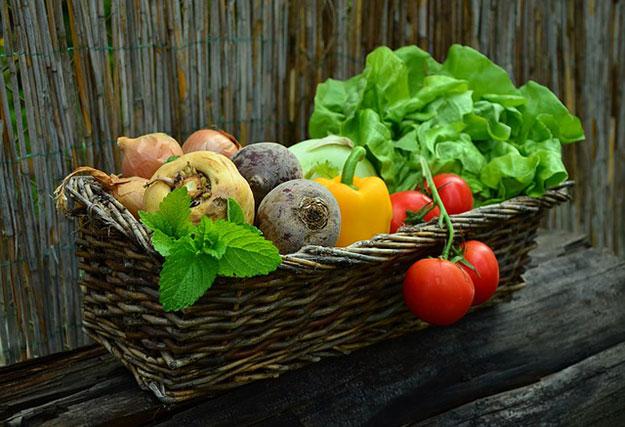 Les aliments riches en zinc page 2 - Aliments riches en fer ...