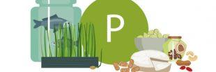 Les aliments riches en phosphore