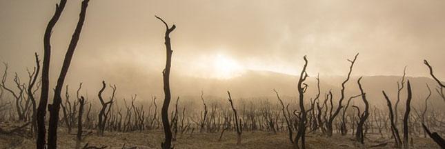 La puissance d'El Niño menace des millions d'enfants dans le monde