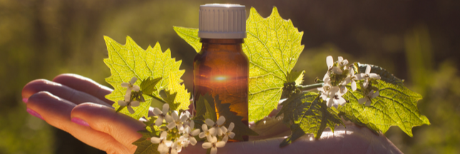 extraits de plante pour combattre le stress