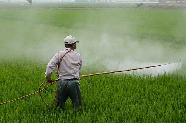 glyphosate-pesticides-efsa-cancer