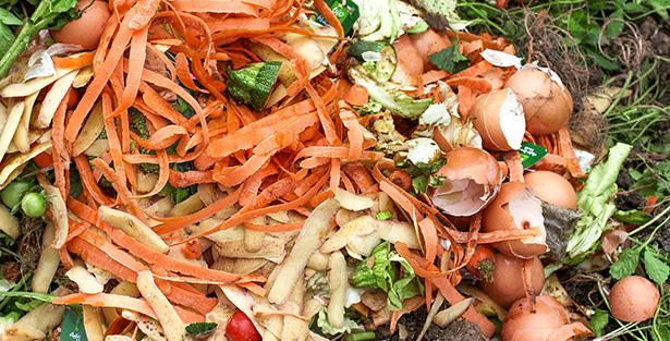 culture en lasagne compost agriculture biologique