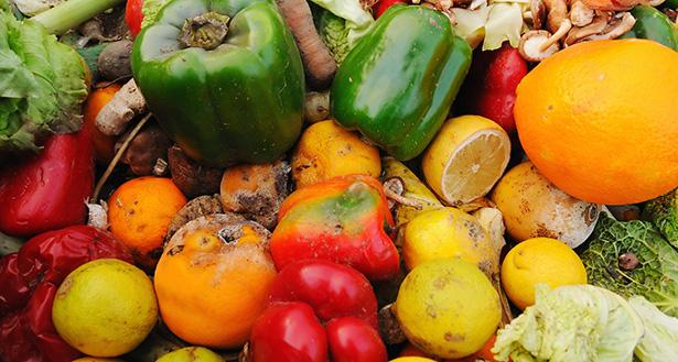 poubelle invendus fruits et légumes supermarché