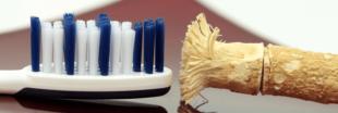 Comment blanchir les dents : le siwak, traitement de choc tout en douceur