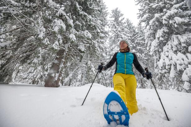 idée de sortie l'hiver dans la nature, activités nature hiver