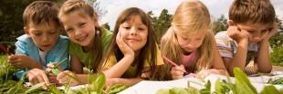 Éco-école : le développement durable, ça s'apprend