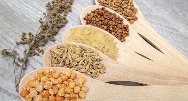 les légumineuses et les céréales