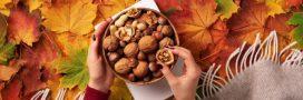 Bienfaits des fruits à coque: les noix, des atouts coeur!