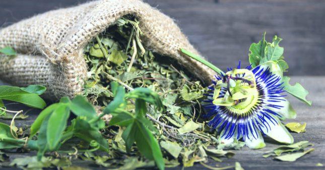 Passiflore et valériane: les plantes du calme