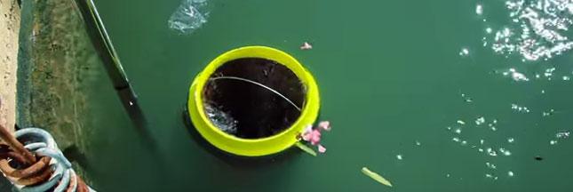'The Seabin Project' : une poubelle écologique pour nettoyer les océans