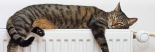 Répartiteurs de chauffage: maîtrisez et payez votre énergie, pas celle des autres