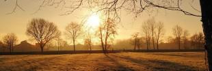 Les sorties vertes du mois de janvier