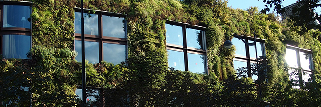 Agriculture urbaine et biodéchets : 100 nouveaux ha de vert à Paris