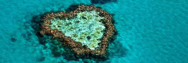 L'amour est dans la nature: 8 photos spectaculaires de coeurs dans le paysage