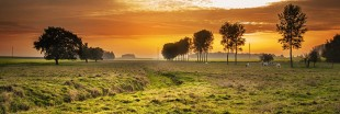 Écologie :  le supplément d'âme de Bercy