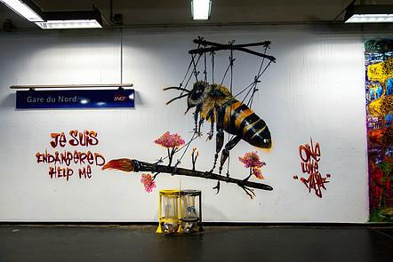 Le street-art au secours de la biodiversité