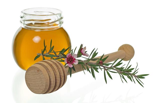 miel manuka fleur de manuka