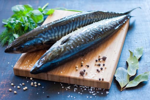 Le maquereau, un poisson que l'on peut acheter