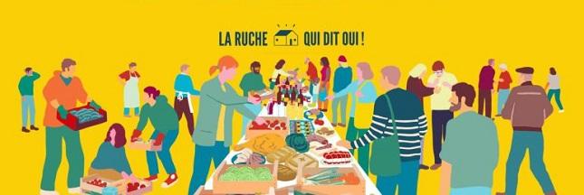 Manger local : le succès de la Ruche qui dit Oui!