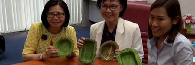 En Thaïlande, on fait des assiettes biodégradables avec des feuilles