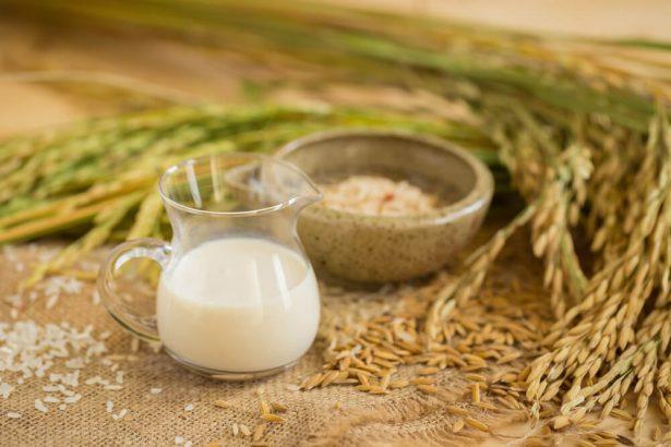 lait végétal, riz