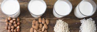 Les boissons végétales : des alternatives gourmandes aux laits animaux