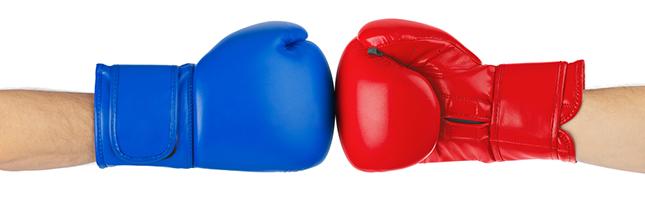 Viande de boeuf vs spiruline : quel choix pour la santé et la planète ?