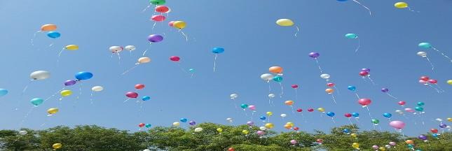Lâchers de ballons, un véritable danger pour l'environnement et la biodiversité