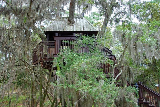 cabane arbres écotourisme