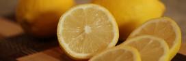 citron fiches pratiques