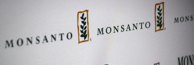 Bayer et Monsanto pourraient bientôt ne faire plus qu'un ?
