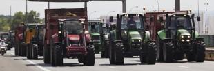 'La Politique Agricole Commune ne crée pas d'emploi' selon un rapport européen