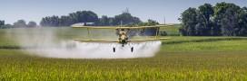 pesticides néonicotinoïdes Hulot