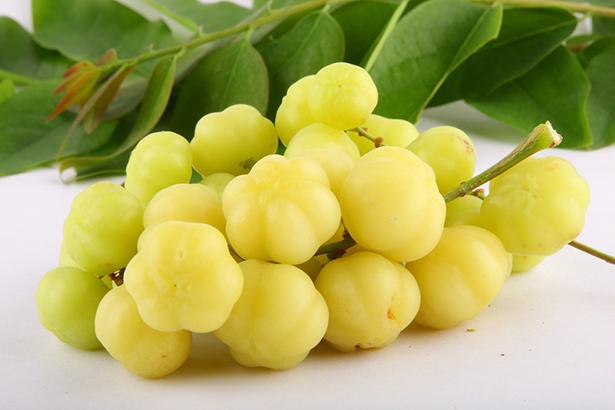 Fruit méconnu la groseille étoilée