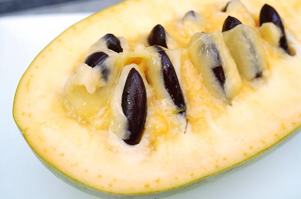 Fruit méconnu l'asimine