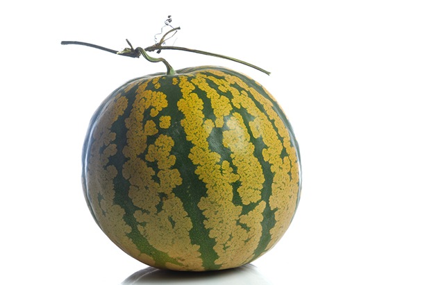 Fruit méconnu la gigérine