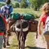 Les 8 tendances qui changent l'industrie du tourisme