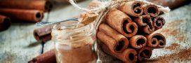 Épices: choisissez bien votre cannelle
