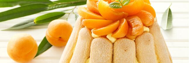 Dessert d'été : charlotte aux abricots et ricotta