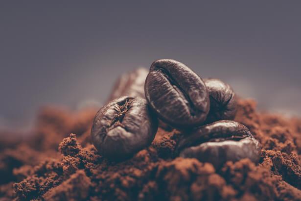 éloigner les fourmis