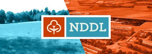 nddl newsgame