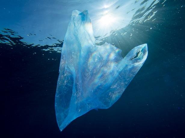 déchets en matière plastique 7e continent