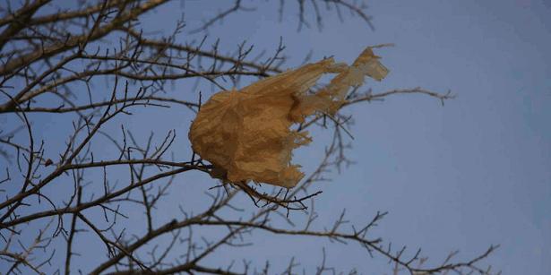 sac plastique nature