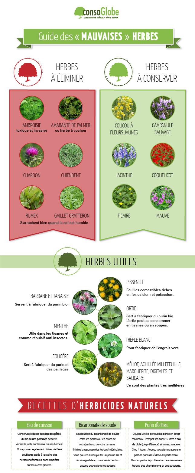 Très Comment identifier les mauvaises herbes ? AG85