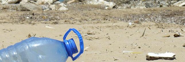 Pollution des océans: les nanoplastiques envahissent aussi nos assiettes