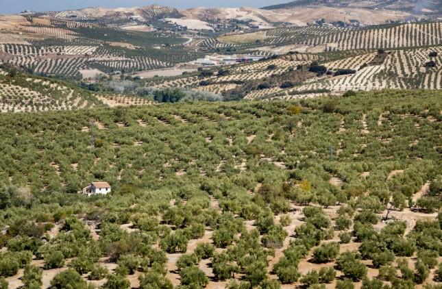 L'inquiétante désertification de l'Espagne