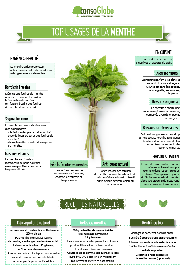 usages-menthe