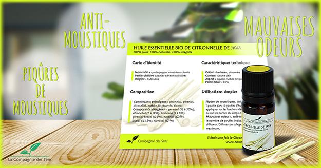 Faites fuir les moustiques avec ces 5 huiles essentielles - Lavande contre moustique ...