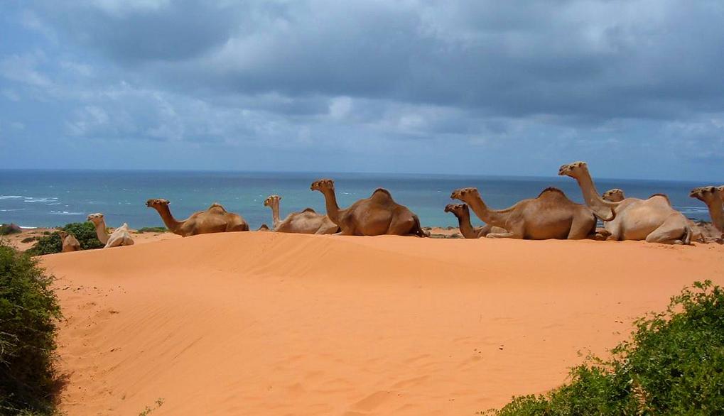 somalie plage